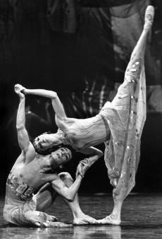 Shéhérazade - Graeme Murphy & Janet Vernon (photo ©Branco Gaica)